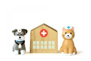 動物病院、ペット病院、犬病院、猫病院