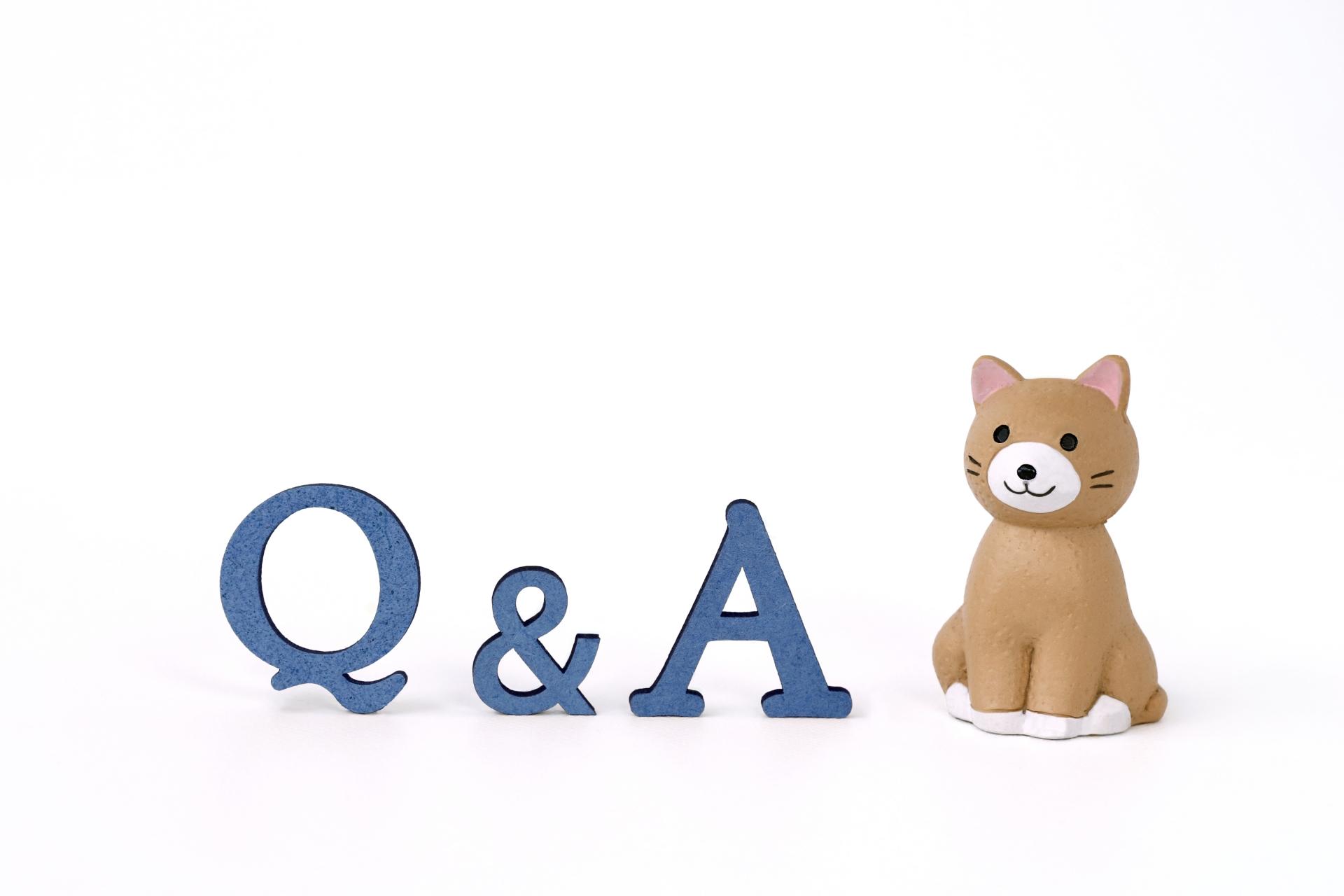 猫、Q&A