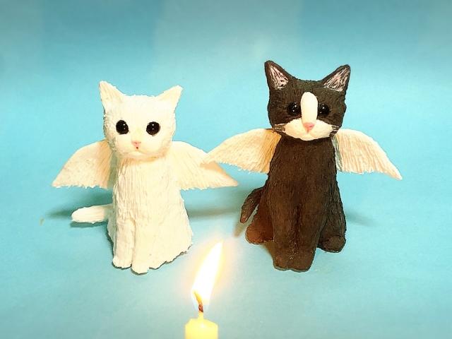 ペット火葬、ペットロス、猫火葬